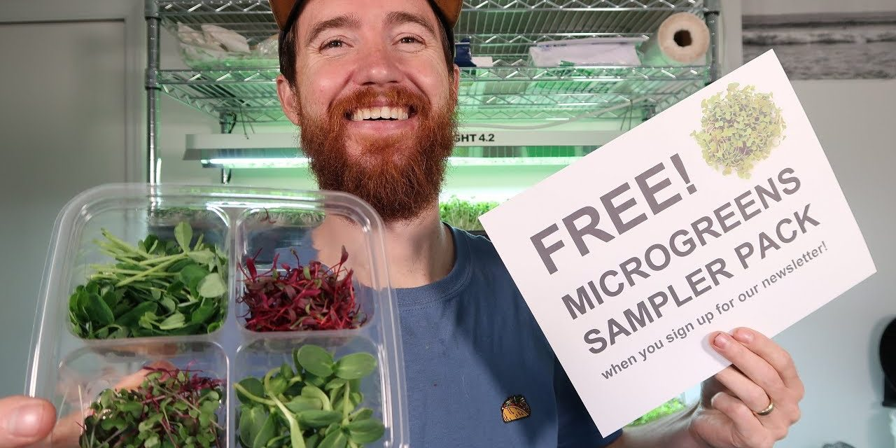 Free Microgreens Sampler Pack (how to and downloads)